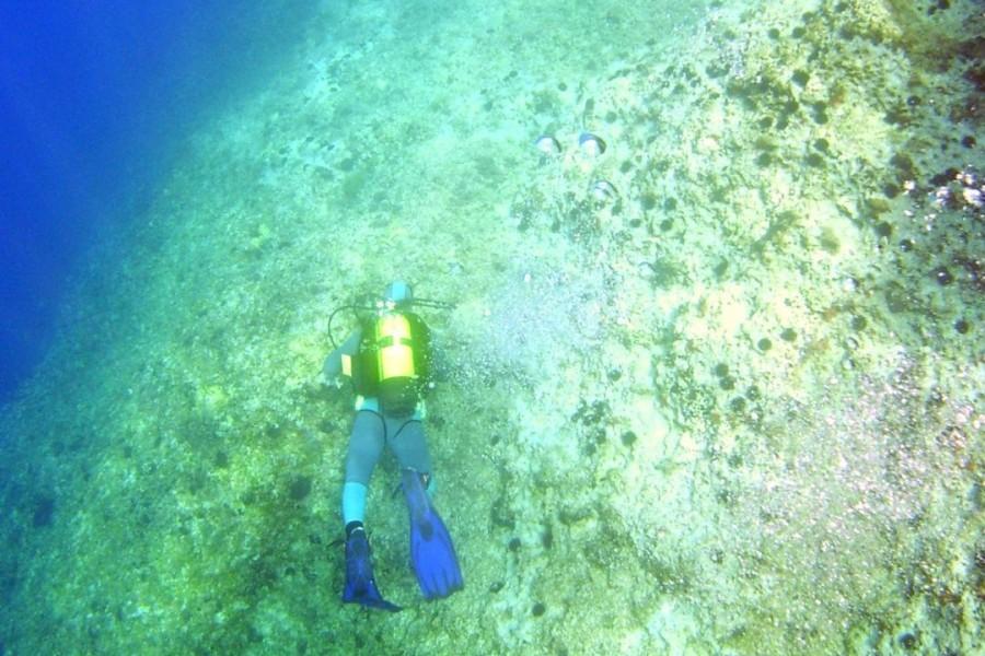 11  Apnoe Freediving - Schwimmen Tauchen Tirol