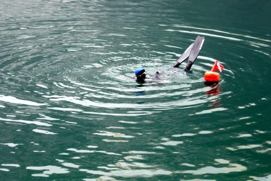 18  Apnoe Freediving - Schwimmen Tauchen Tirol